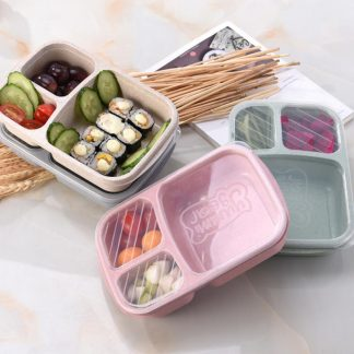 Wheat Straw Kids Bento Lunch Box